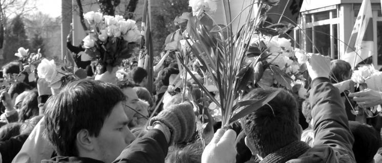 Protest mit weißen Rosen am Geschwister-Scholl-Gymnasium (Foto: Bettina Ohnesorge)