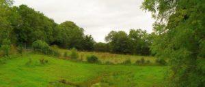 So sieht die Grenze in Irland aus: County Water (Foto: [url=http://www.geograph.ie/photo/1442859]Dean Molyneaux/geograph.ie[/url])