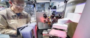 Ist ihr Job auch bedroht? Biologielaborantin bei der Untersuchung von Gewebeproben (Foto: Bayer AG)
