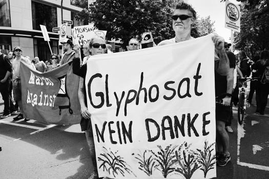 Protest in Düsseldorf gegen Profit mit Pflanzengiften