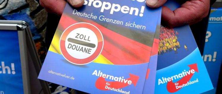 Migranten ausbürgern, Reiche beschenken, Sozialabbau fortsetzen: So stellt die AfD sich auf den Wahlkampf ein. (Foto: [url=https://commons.wikimedia.org/wiki/File:AfD_hand_bills_Asylchaos.jpg]Oxfordian Kissuth[/url])