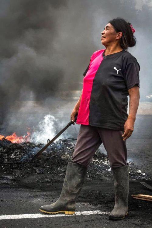 Mit Protesten, Straßensperren und Generalstreik zwangen die Ecuadorianer Präsident Moreno zur Rücknahme des Sparpakets.
