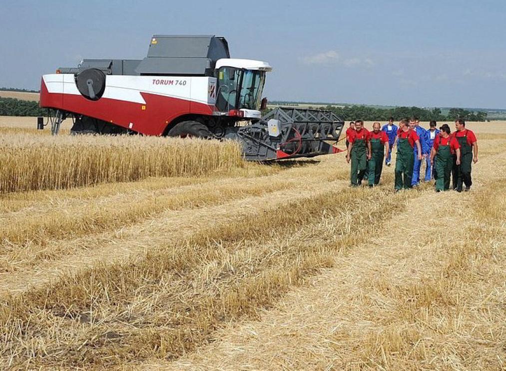Dank westlicher Sanktionen ist die russische Landwirtschaft im Aufwind