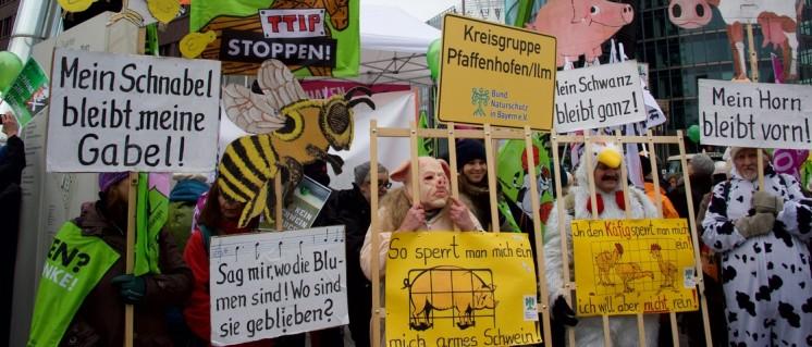 """Am 16. Januar haben in Berlin zehntausende gegen konventionelle Landwirtschaft protestiert. Unter dem Motto """"Wir haben es satt"""" zogen die Bauern und Umweltschützer vom Potsdamer Platz zum Bundeskanzleramt. (Foto: Gabriele Senft)"""