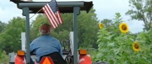Die US-Landwirte gehören zu Trumps Stammwählerschaft. Gerade sie kriegen die Folgen des Handelskriegs mit der VR China deutlich zu spüren. (Foto: Public Domain)