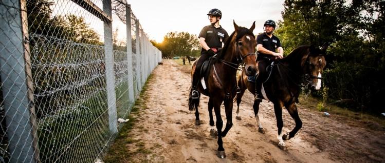 Nicht in Bayern: Patrouille an der ungarisch-serbischen Grenze. (Foto: Ber Benedek photo /flickr.com/CC BY 2.0)