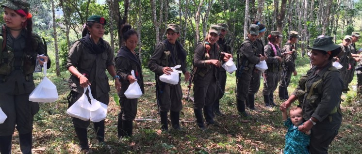 Die Einheiten der FARC sind bereit zur Übergabe ihrer Waffen. (Foto: Misión ONU en Colombia)