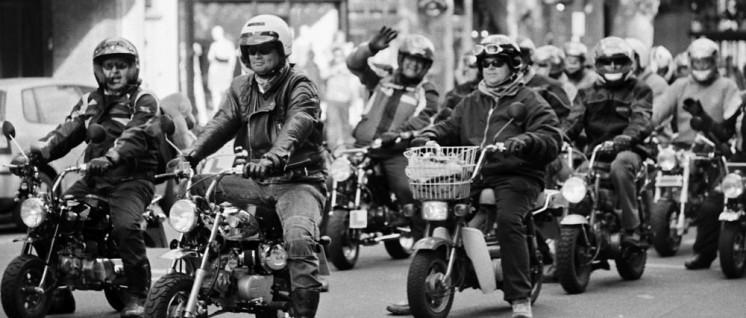 Jetzt umsteigen: Motorräder der Marke Harley Davidson könnten teurer werden. (Foto: [url=https://commons.wikimedia.org/wiki/File:Honda_Monkey_Bike_riders.jpg]vintagedept/Wikimedia Commons[/url])