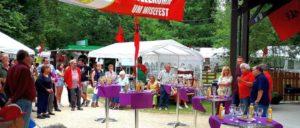 Sonntäglicher Sektempfang auf dem Wisefest (Foto: ZLV)