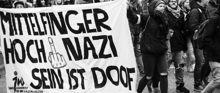 Ob NPD oder AfD: Widerstand bleibt nötig: Antirassistischer Schulstreik gegen AFD, NPD & Co (2016) (Foto: Ulf Stephan/r-mediabase.eu)