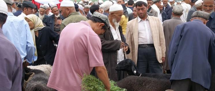 Viehmarkt in Kaschgar, der weitesten westlich gelegenen Stadt Chinas im Autonomen Gebiet Xinjiang (Foto: [url=https://www.flickr.com/photos/69057297@N04/43621967952]ChiralJon[/url])