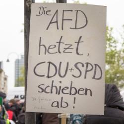Proteste gegen die AfD in Köln: Die AfD ist nur ein Teil des Problems